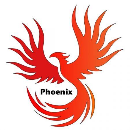 Phoenix FSZ Saar